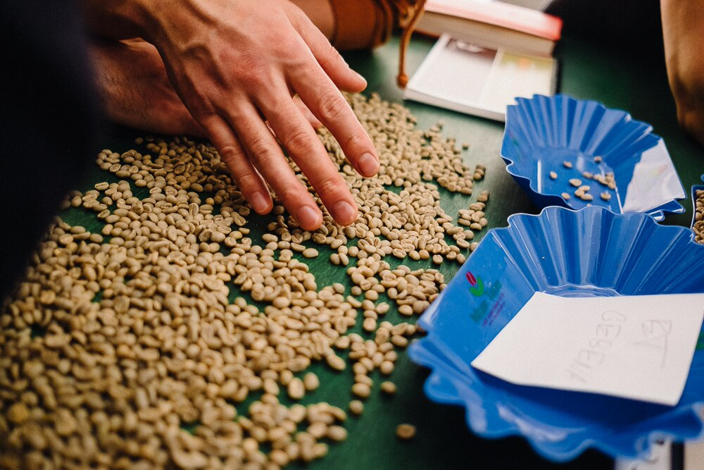 Análisis café verde